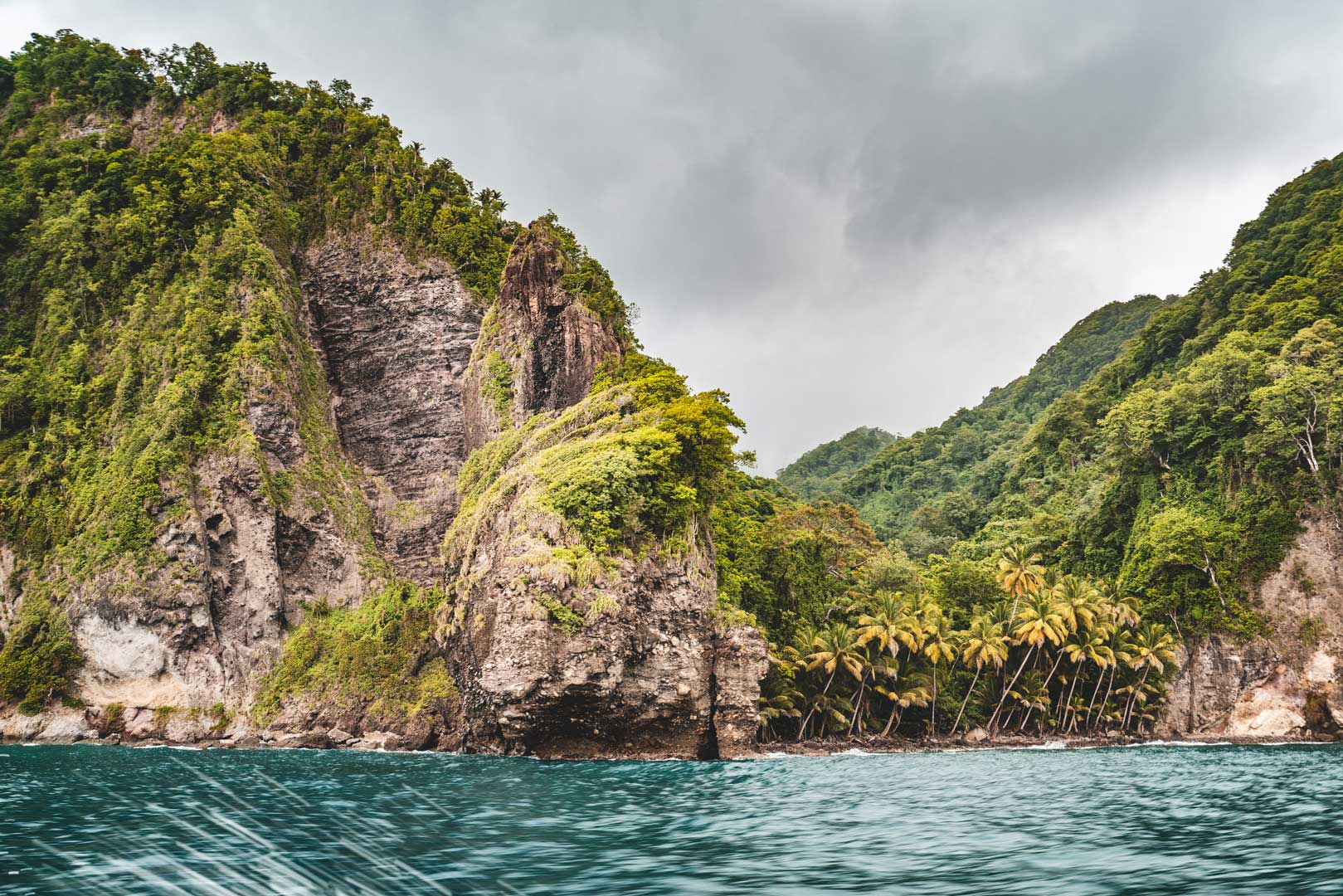 La forêt tropicale, depuis la côte