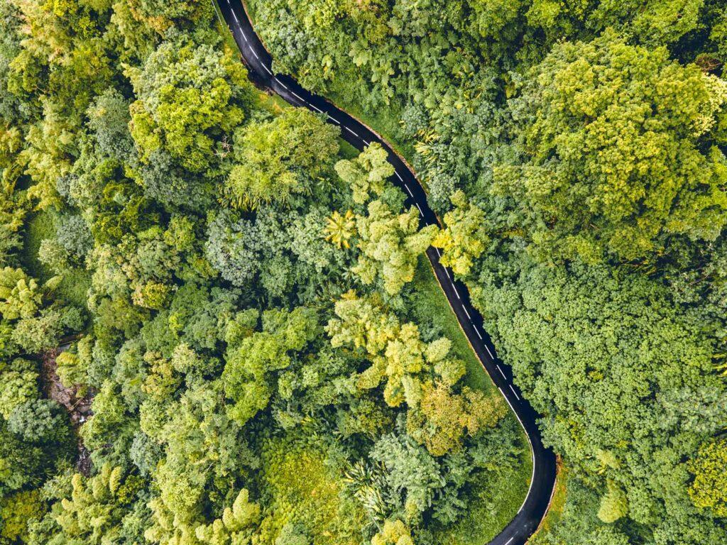 La route de la trace, qui traverse le nord de l'île
