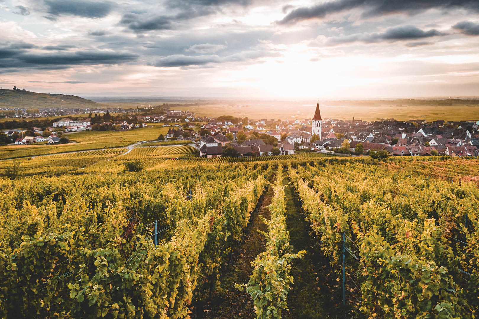 Le village alsacien d'Ammerschwihr au lever du soleil